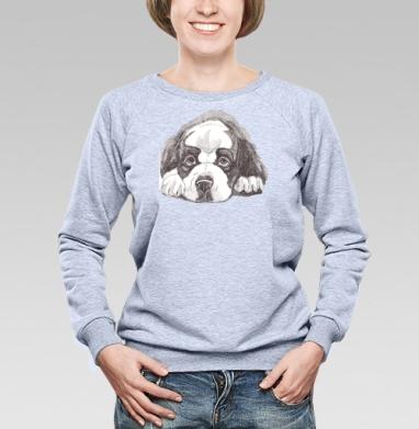 Сенбенар - Купить детские свитшоты с собаками в Москве, цена детских свитшотов с собаками  с прикольными принтами - магазин дизайнерской одежды MaryJane