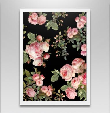 Розовые розы на черном фоне - Постер в белой раме, розы