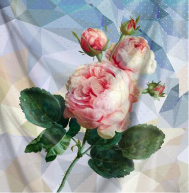Розовая роза на геометрическом фоне - романтика, Популярные