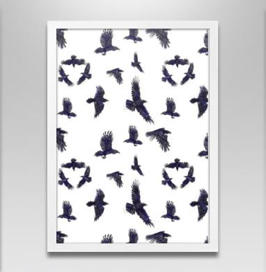 Стая воронов - Постеры, птицы, Популярные