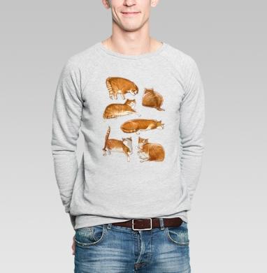 Паттерн с рыжими котами, Свитшот мужской серый-меланж  320гр, стандарт