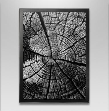 Кольца жизни - Постер в чёрной раме