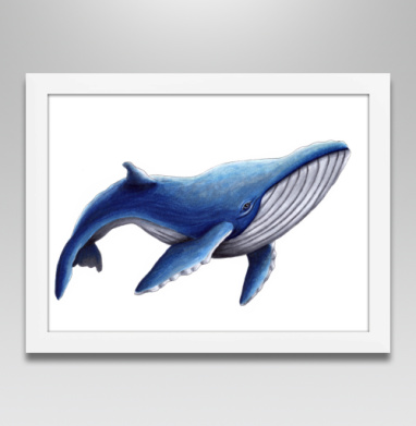 Синий кит - Постеры, Популярные