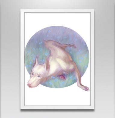 Белый доберман - Постер в белой раме, собаки