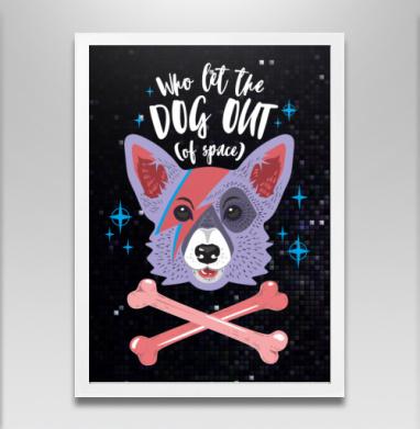 Кто выпустил собаку? - Постеры, собаки, Популярные