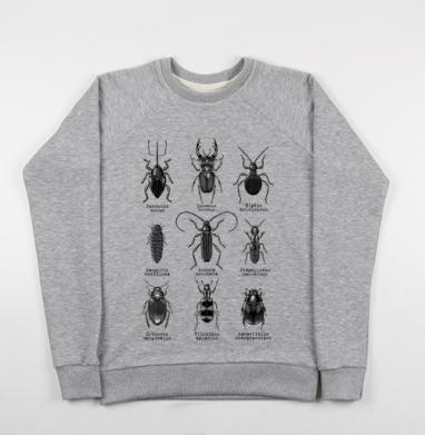 Жучары - Купить детские свитшоты с насекомыми в Москве, цена детских свитшотов с насекомыми  с прикольными принтами - магазин дизайнерской одежды MaryJane