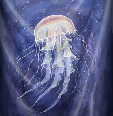 Медуза батик - рыба, Популярные