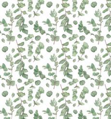 Веточки эвкалипта - зеленый - Коллекции