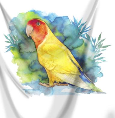 Розовощекий попугайчик - Печать на текстиле